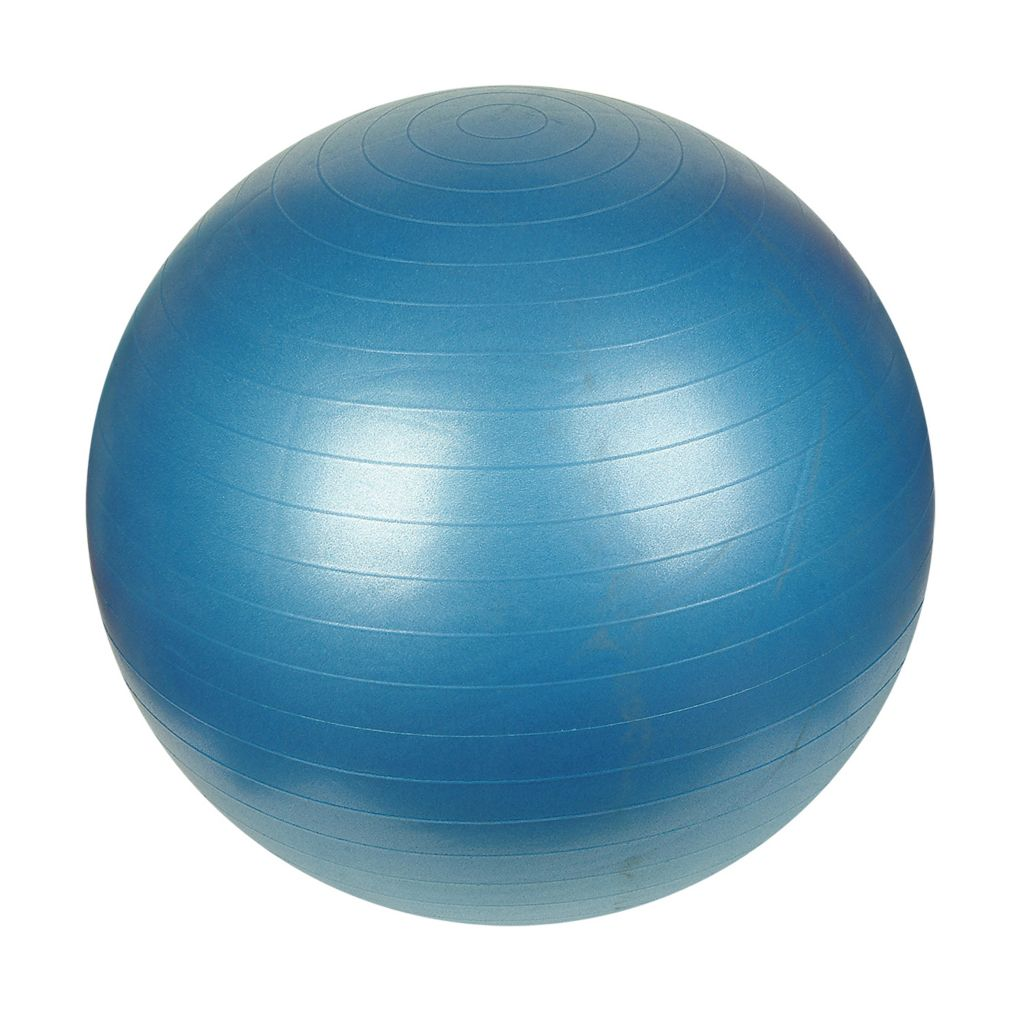 000-350 - Sunny Health and Fitness 75CM Anti-Burst Gym Ball