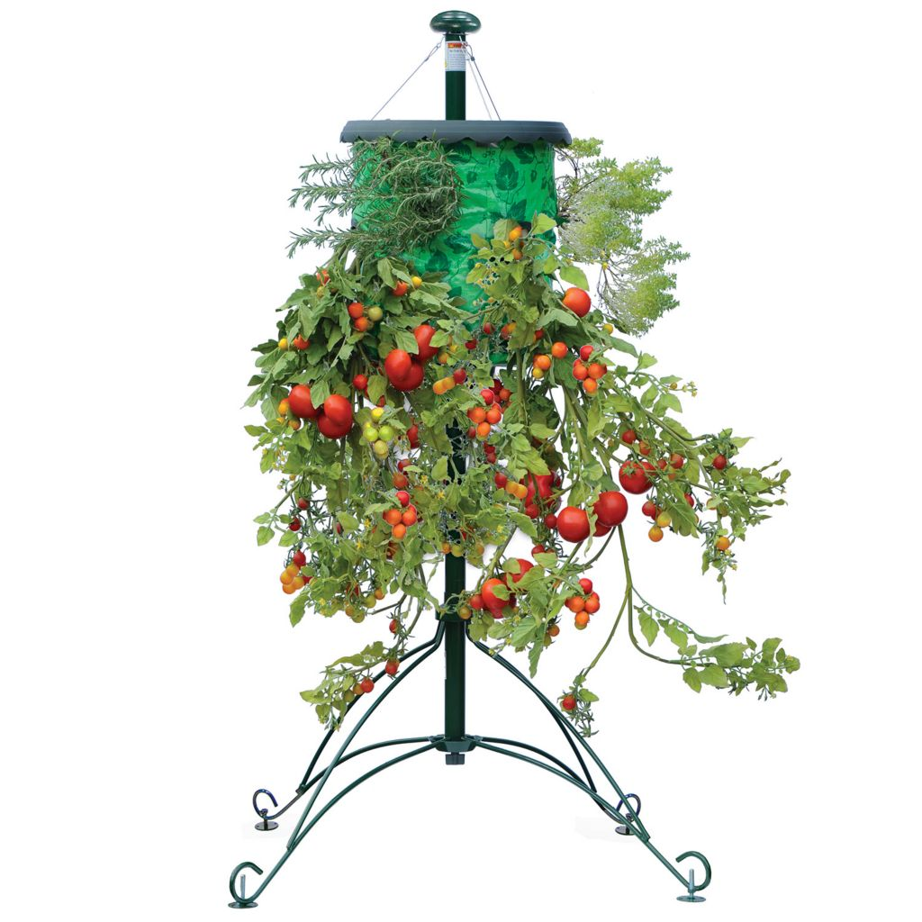 000-966 - Topsy Turvy® Set of Two Tomato Trees w/ Watering & Feeding Canes