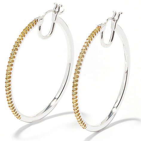 121-828 - Diamond Treasures Sterling Silver 0.50ctw Diamond Hoop Earrings