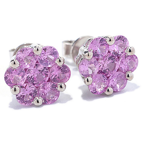 127-686 - Gem Treasures Sterling Silver Fancy Sapphire Flower Cluster Earrings
