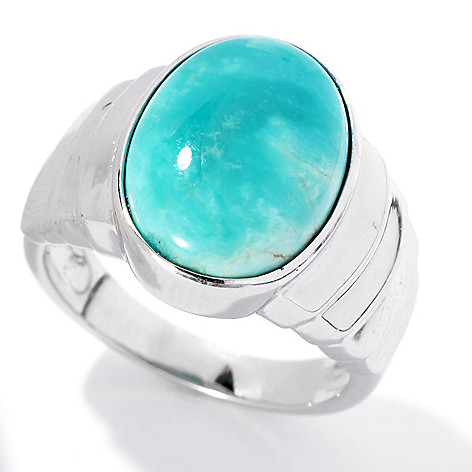 131-835 - Gem Insider Sterling Silver 14 x 10mm Oval Fox Turquoise Tapered Ring