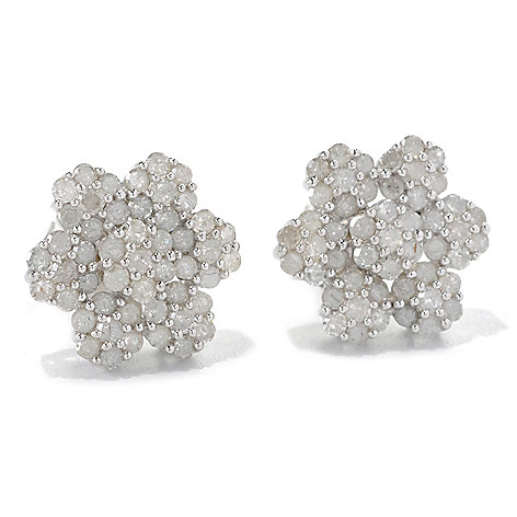 132-216 - Diamond Treasures Sterling Silver 1.00ctw Diamond Flower Cluster Stud Earrings