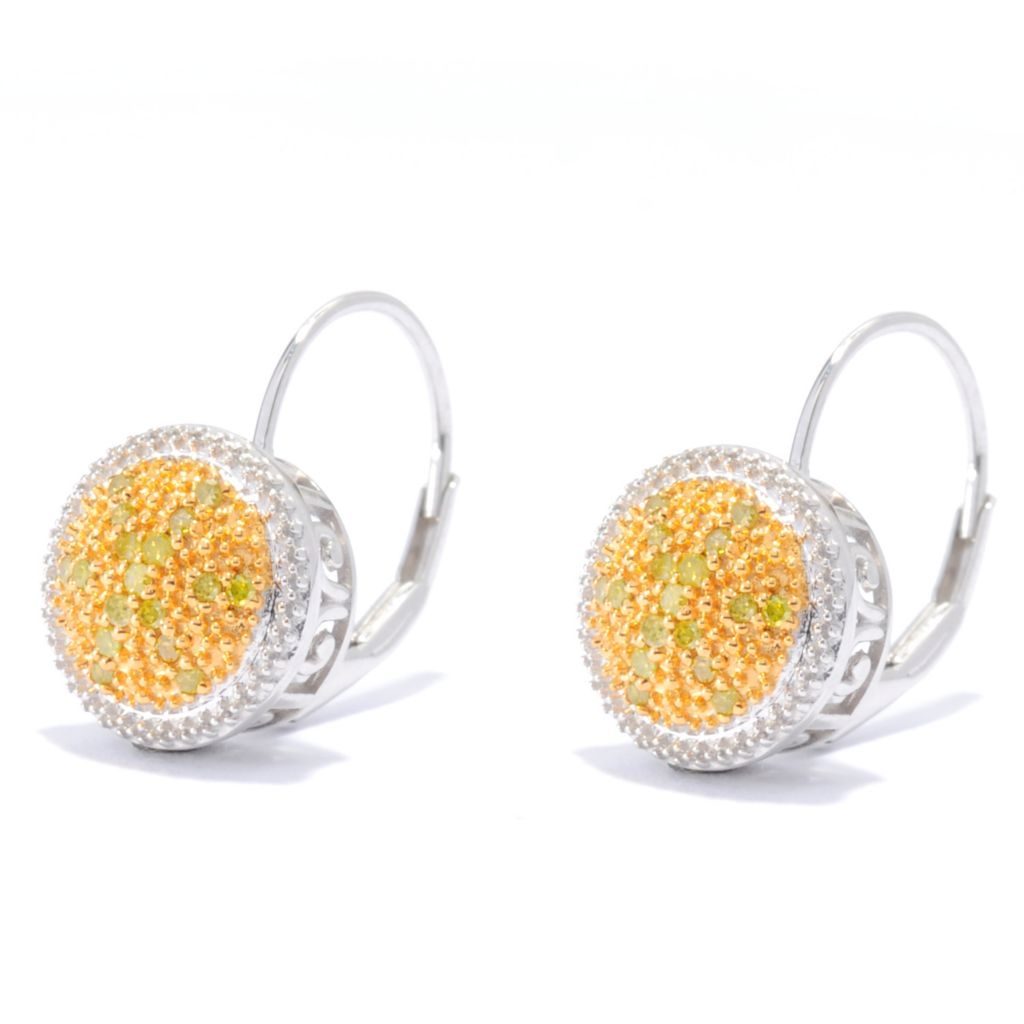 136-126 - Diamond Treasures Sterling Silver 0.19ctw Fancy Color Diamond Beadwork Earrings