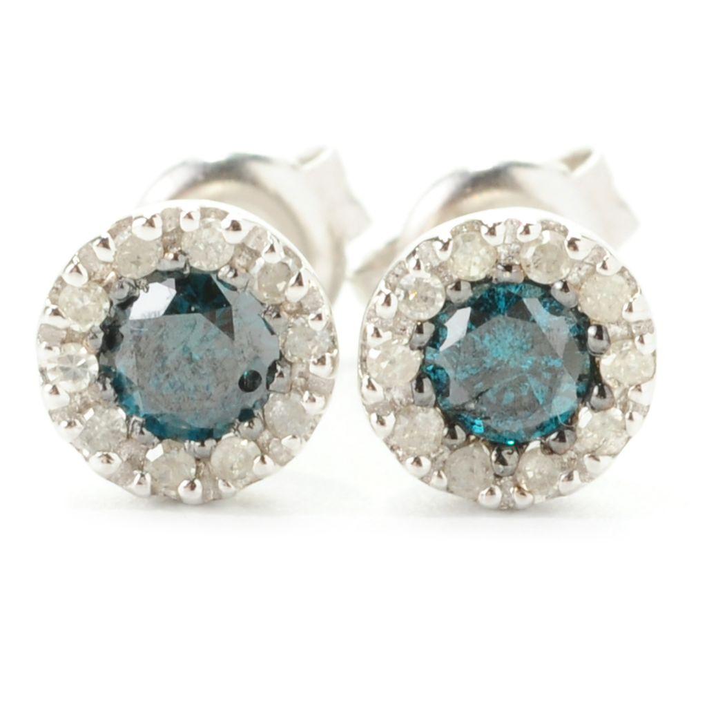 139-012 - Diamond Treasures Sterling Silver 0.50ctw Round Multi Diamond Halo Earrings