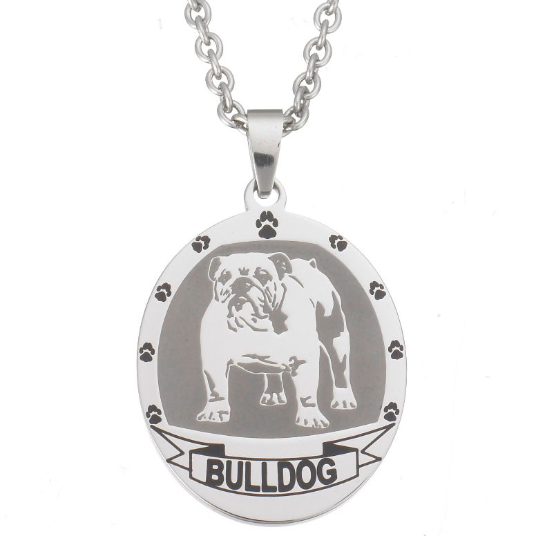 "140-852 - Stainless Steel Sandblasted & Enameled Pet Pendant w/ 20"" Chain"