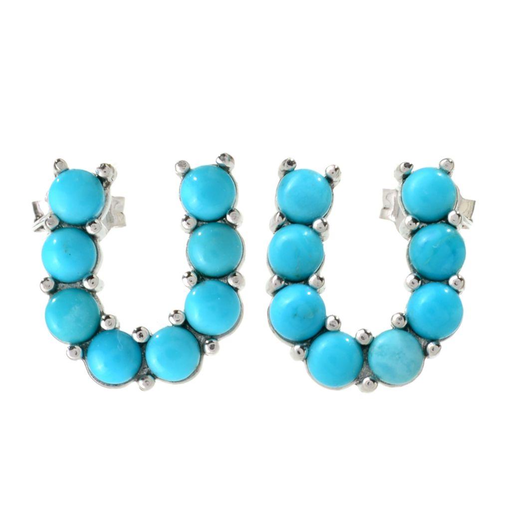 141-224 - Gem Insider Sterling Silver Round Kingman Turquoise Horseshoe Earrings