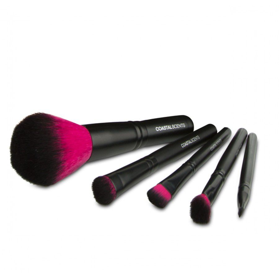 307-632 - Coastal Scents Color Me Fuchsia Five-Piece Brush Set w/ Case