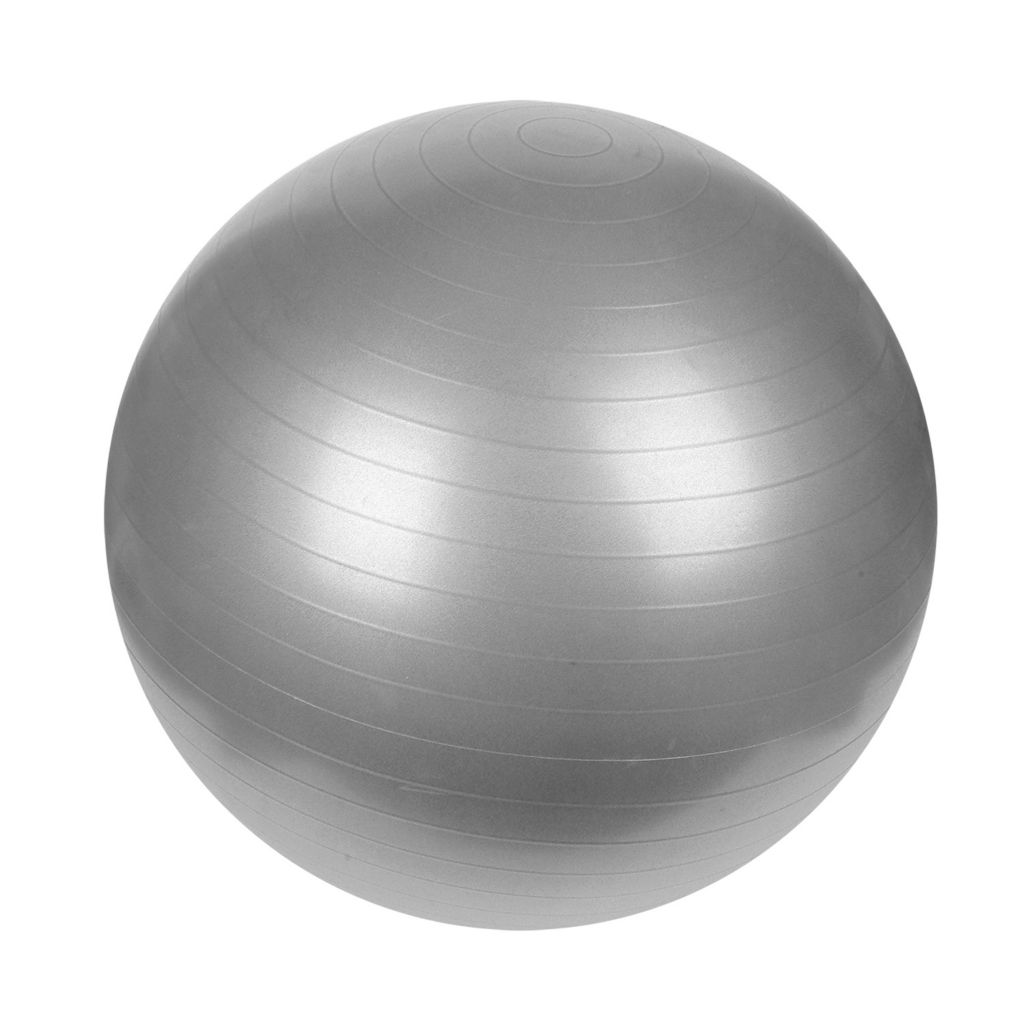 415-443 - Sunny Health and Fitness 65CM Anti-Burst Gym Ball