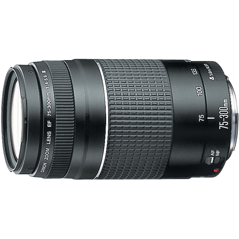 429-626 - Canon 6473A003 EF 75-300mm f/4-5.6 III Telephoto Zoom Lens