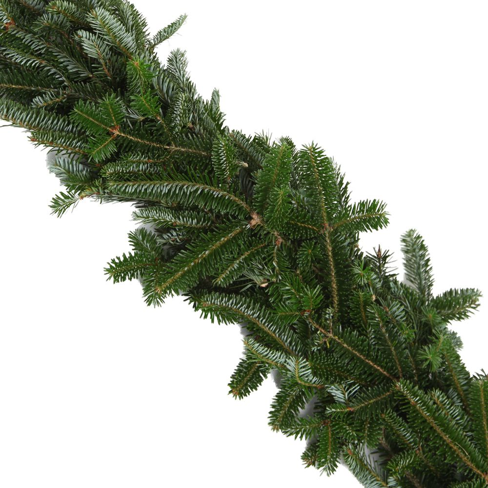 434-035 - The Christmas Tree Company 25' Fresh Fraser Fir Premium Holiday Garland