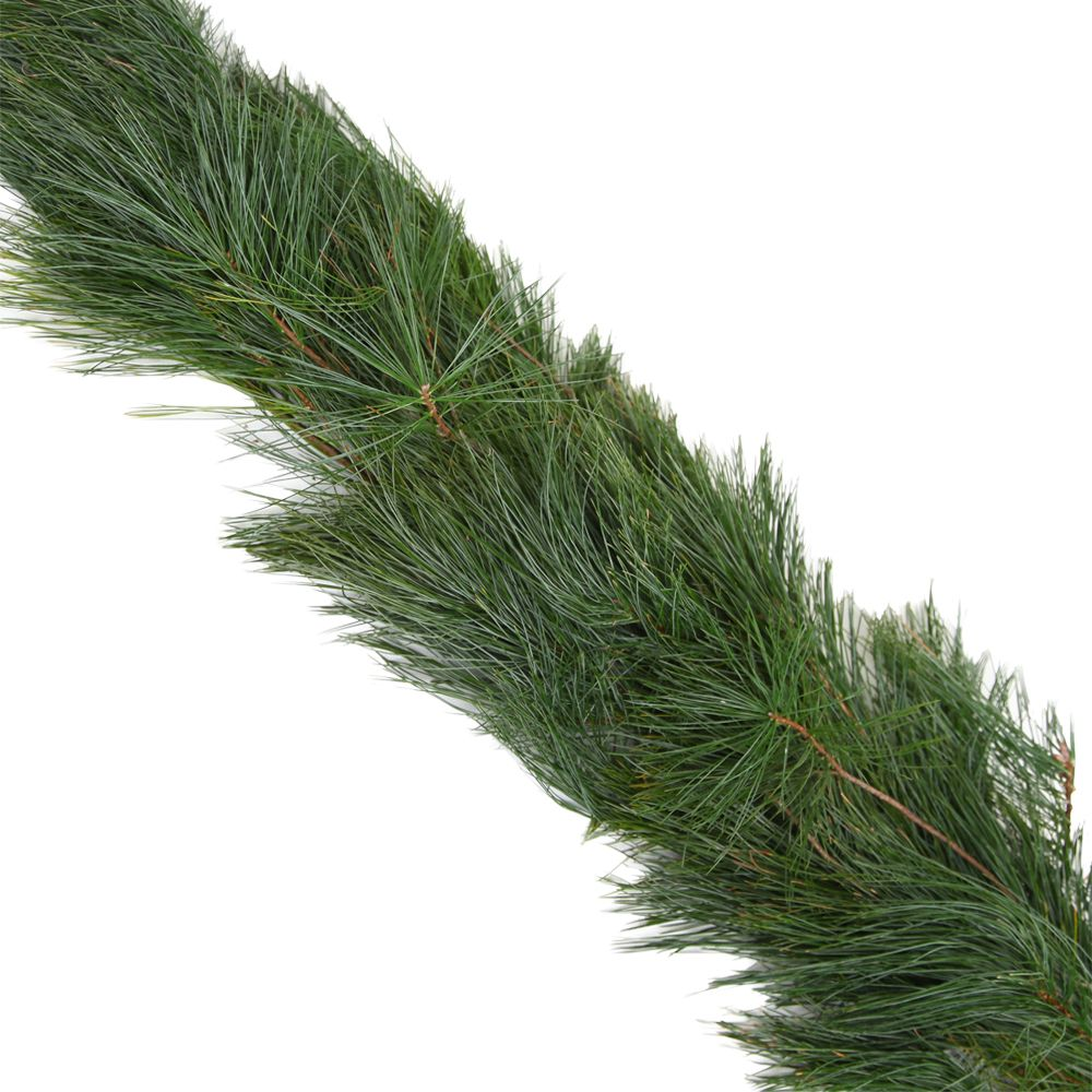 434-037 - The Christmas Tree Company 25' Fresh White Pine Premium Holiday Garland