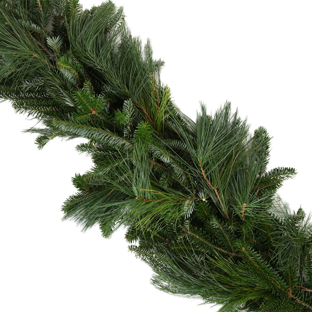434-040 - The Christmas Tree Company 25' Fresh Fraser Fir Premium Holiday Garland