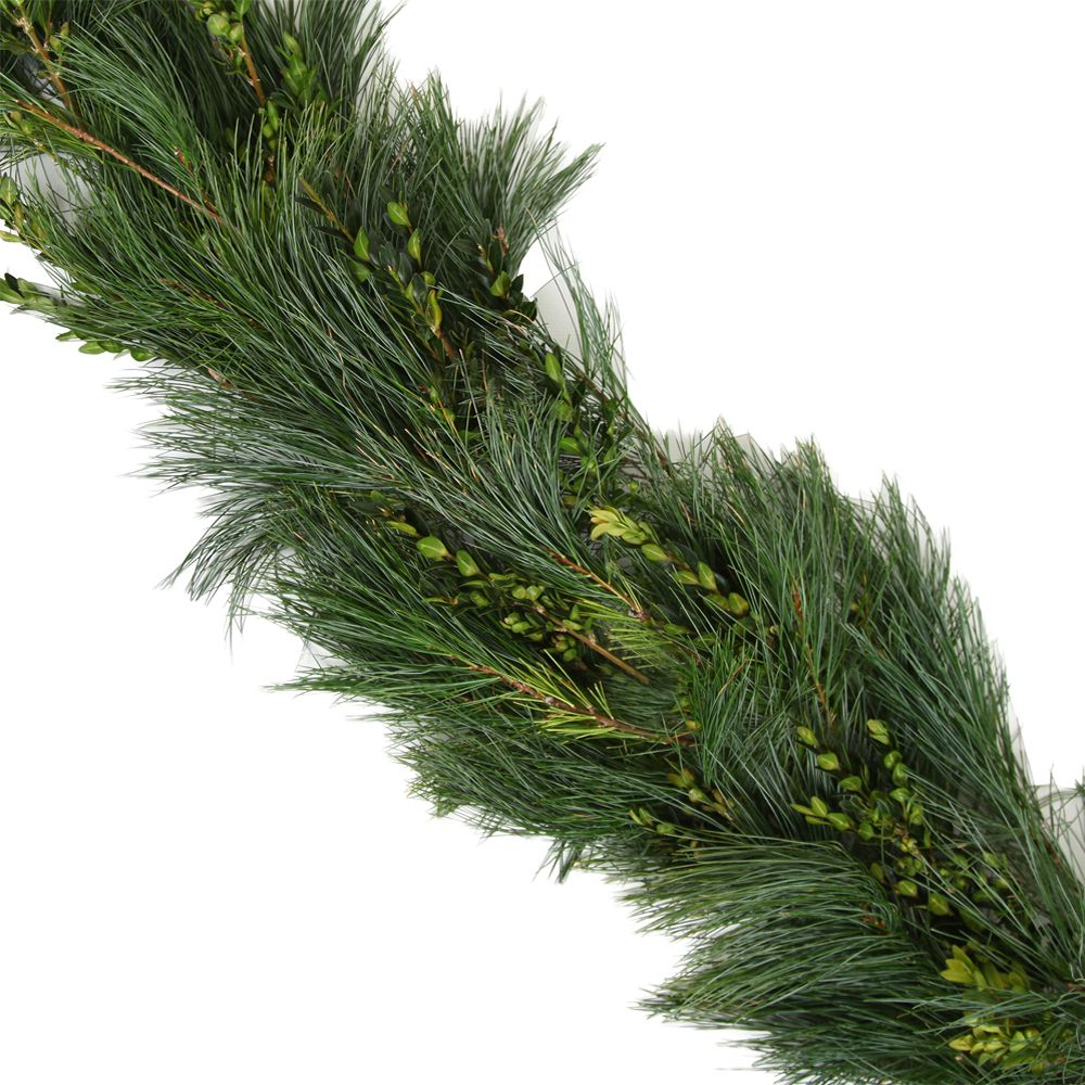 434-042 - The Christmas Tree Company 25' Boxwood-Pine Premium Holiday Garland