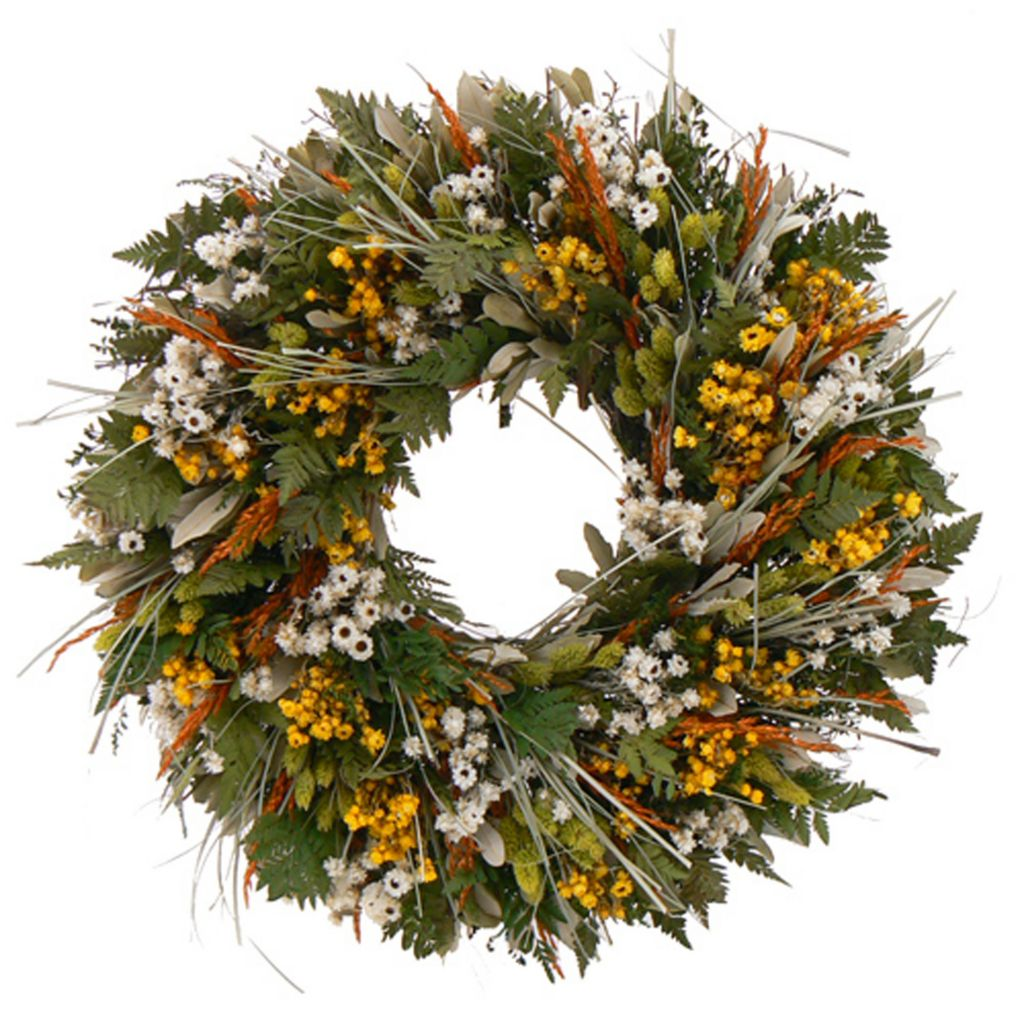 436-758 - Christmas Tree Company Wild Daisy Stroll Dried Floral Wreath