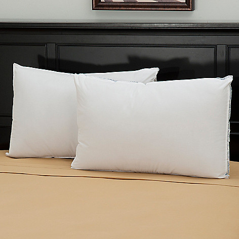 439-576 - Cozelle® 220TC Cotton Extra Firm Density Pillow Pair