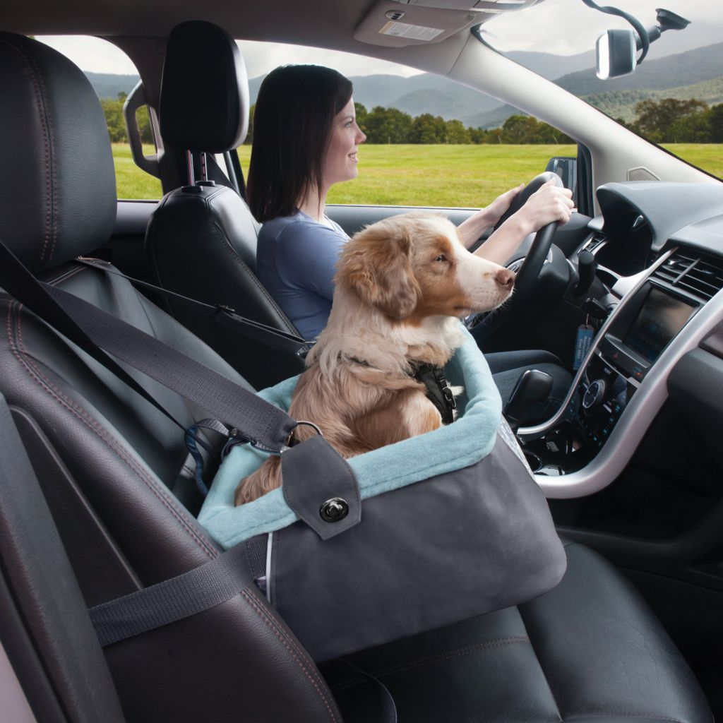 440-035 - Kurgo® Floral Car Seat Pet Booster & Harness Combo Set