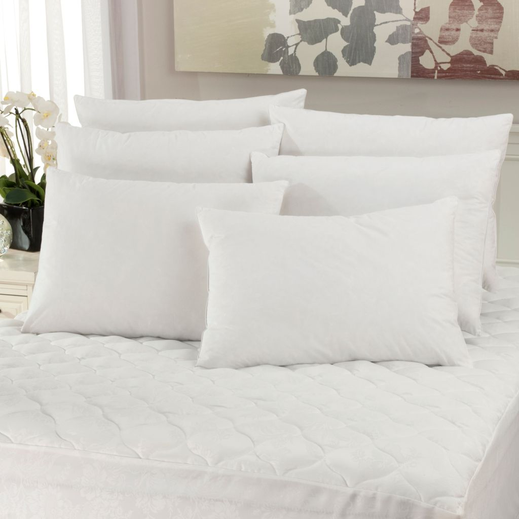 440-343 - Cozelle® Set of Six 233TC Cotton Feather Plus Pillows