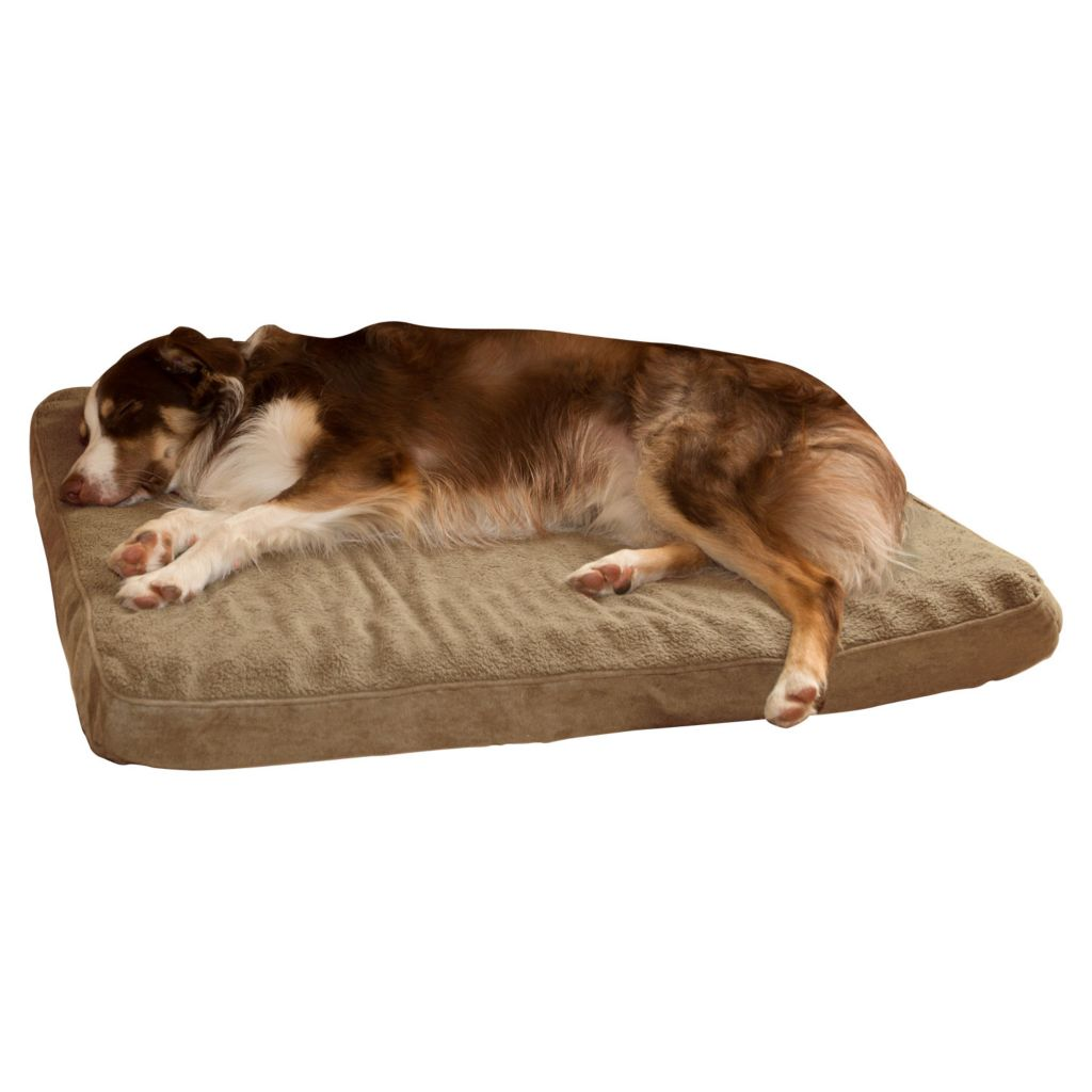 442-165 - PAW™ Orthopedic Super Foam Pet Bed