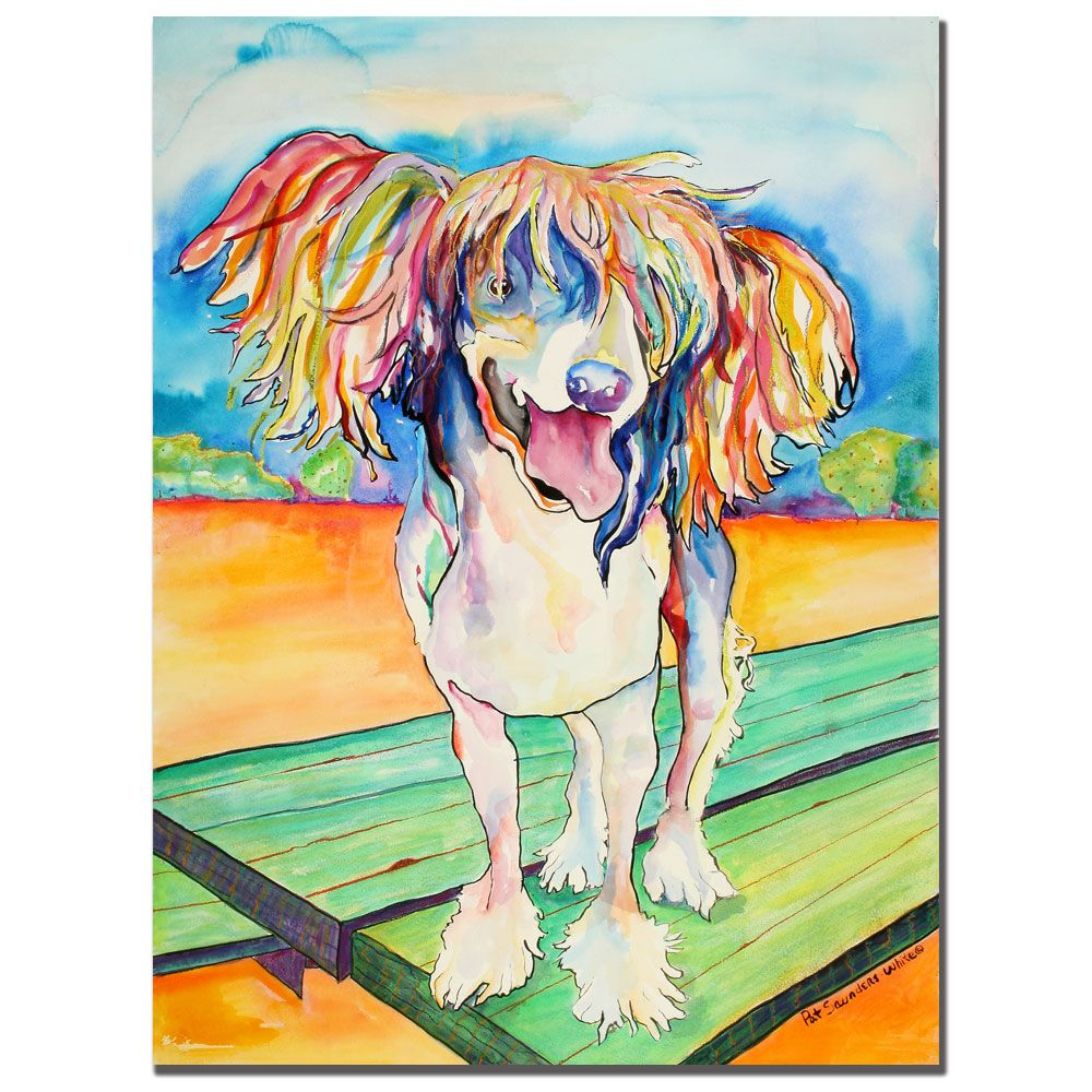 "442-904 - Pat Saunders-White ""Mango Salsa"" Ready to Hang Canvas Art"