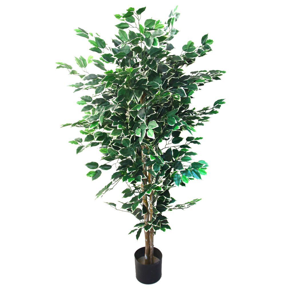 443-619 - 5' Artificial Romano Ficus Tree