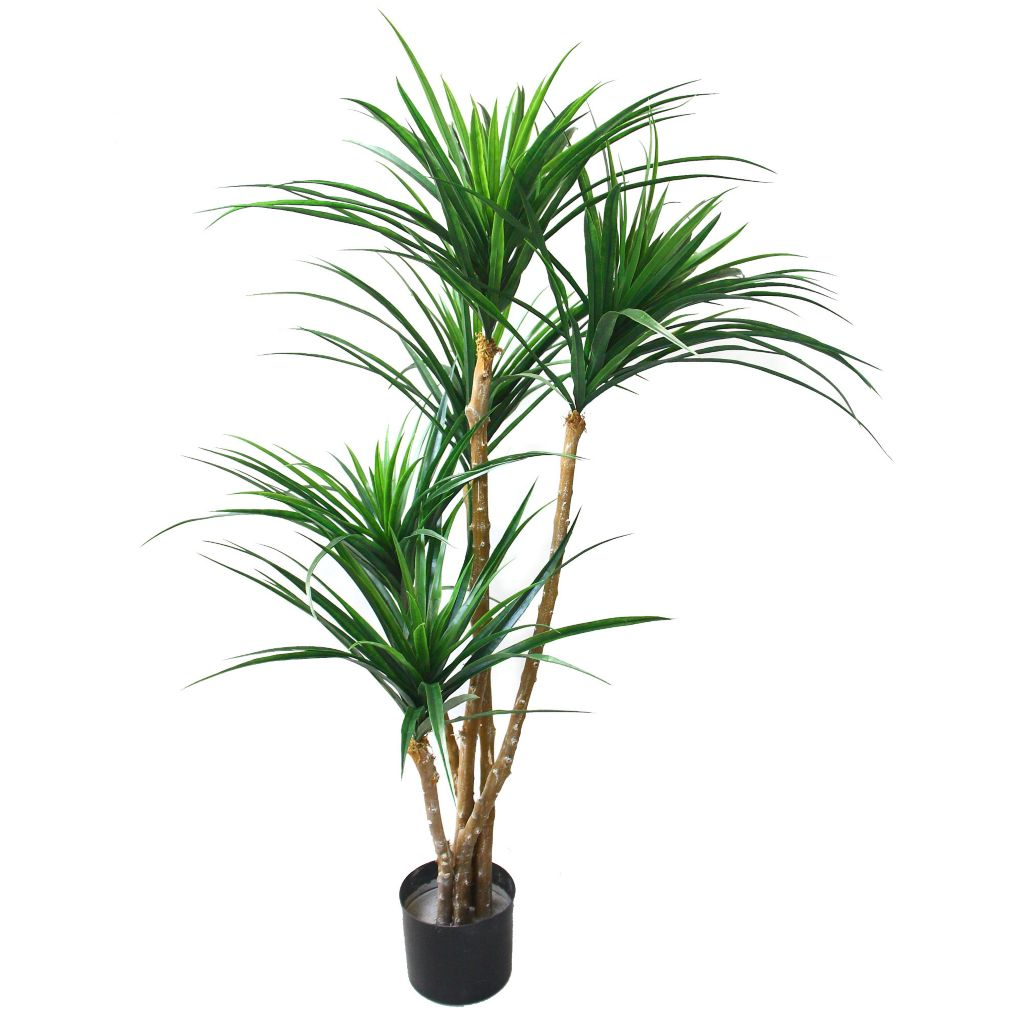"443-621 - 51"" Artificial Romano Tropical Yucana Tree"
