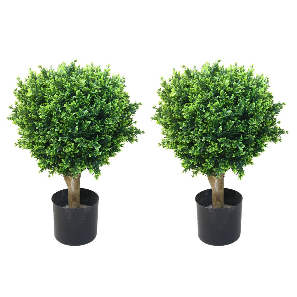 "443-626 - Set of Two 24"" Artificial Romano Hedyotis Topiary Trees"
