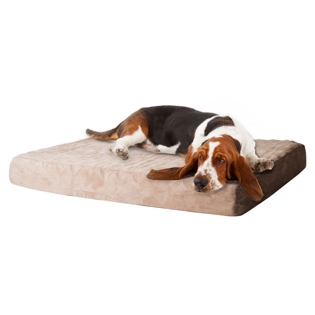 445-645 - PAW™ Memory Foam Dog Bed w/ Removable Cover