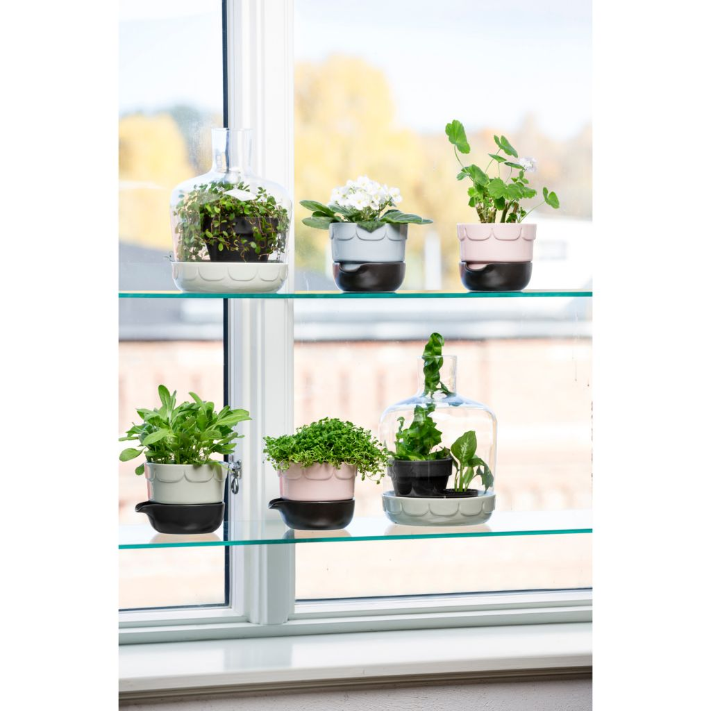 446-292 - Sagaform Three-Piece Stoneware Mini Greenhouse and Herb Pot Set