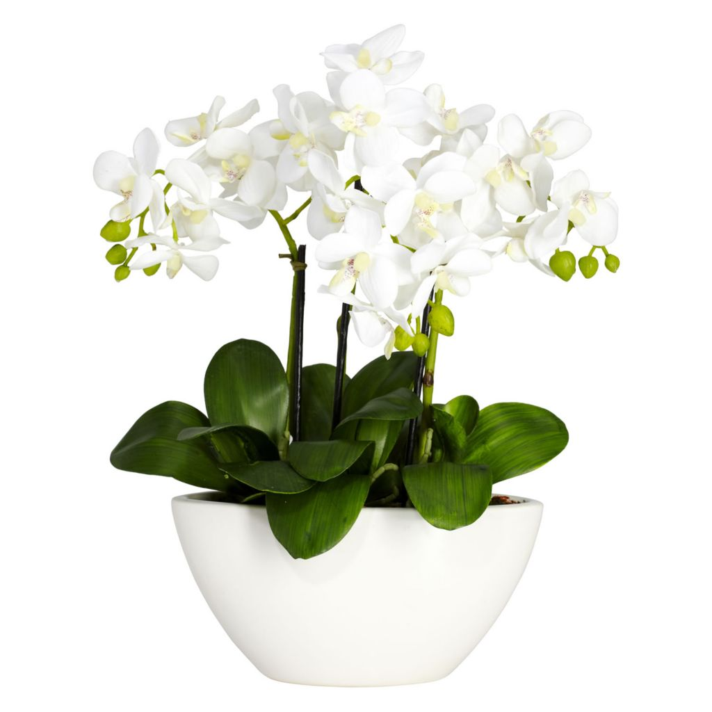"446-924 - 16"" Phalaenopsis Silk Flower Arrangement"