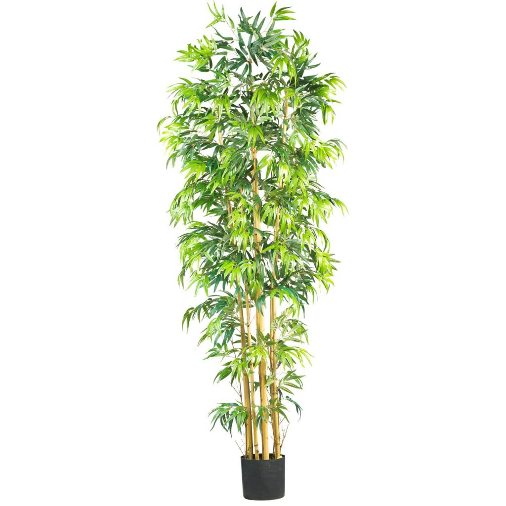 "446-930 - 84"" Bambusa Bamboo Silk Tree"