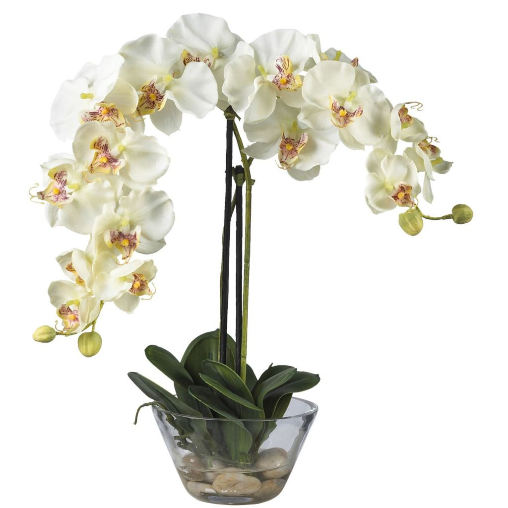 "446-963 - 18"" Phalaenopsis Silk Flower Arrangement w/ Glass Vase"