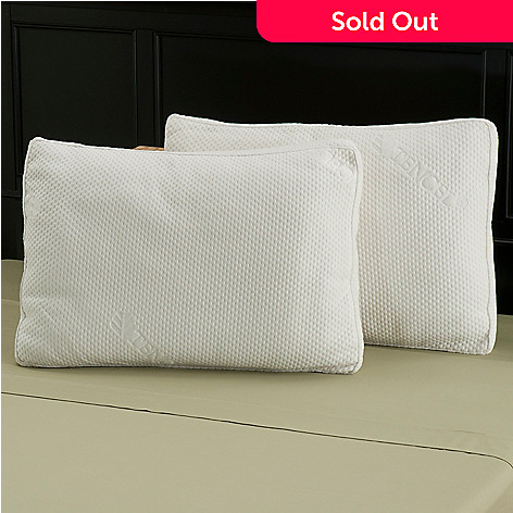 429-778 - North Shore Linens™ Polyester & Tencel Gusseted Fiber Pillow Pair