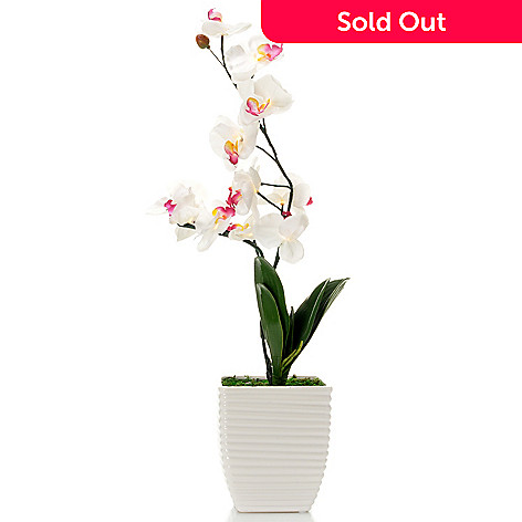 437-025 - Style at Home with Margie 22'' Glowing Orchids LED Ceramic Pot