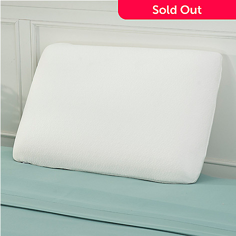 441-731 - Cozelle® 21'' x 13'' Foam Pillow