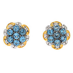 Gems en Vogue Tanzanian Aquamarine & Diamond Cluster Stud Earrings