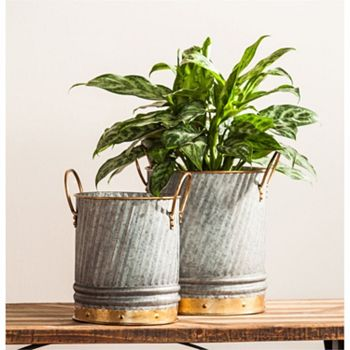 Outdoor Living Get Ready For Spring - 484-484 Evergreen Set of 2 Galvanized Metal Pail Planters - 484-484