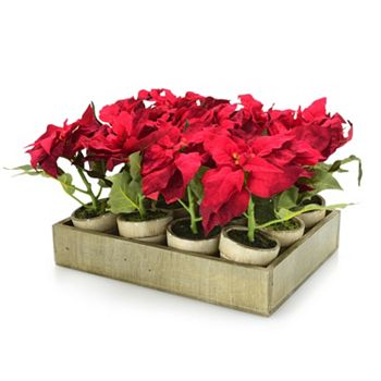 Christmas Decor For The Most Wonderful Home - 497-953 At Home w Jorge 12 Assorted Red Poinsettia w Wood Tray - 497-953